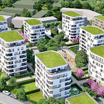 <img src='/wp-content/uploads/2019/09/Stadtsiedlung_Icon_Pressebericht_Zeitung_PDF.svg' /> <p>Über 500 Wohnungen wachsen auf dem Nonnenbuckel</p>